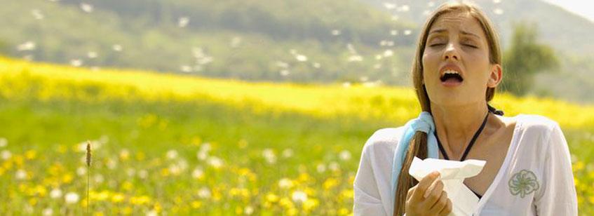 Alergias al polen
